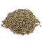 Dill Seed Gourmet Whole-100% Natural-1 lb.-India